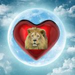 Valentineheartlionthumb