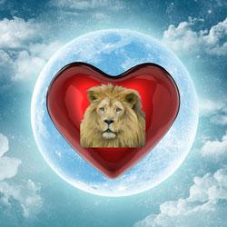 Valentineheartlionweb2