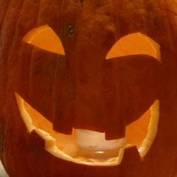 pumpkin250