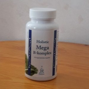 MegaB500