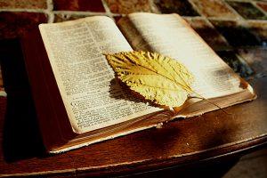 bible-1166260